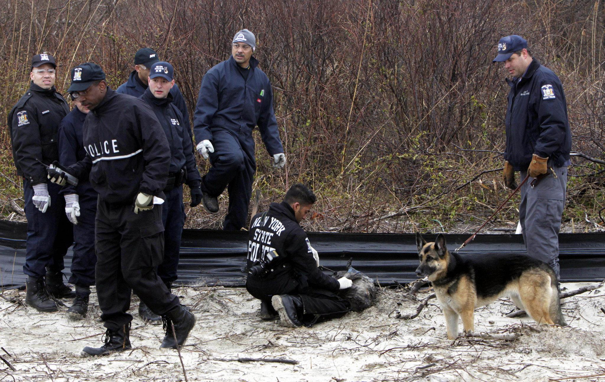 Na foto: Investigadores do Condado de Suffolk fazem buscas na área entre Gilgo Beach e Oak Beach. Todos os corpos foram encontrados na auto-estrada de Long Island que corta o condado de Suffolk. Créditos: New York Times.