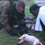 Salvamento de Animais: Uma história que merece ser contada