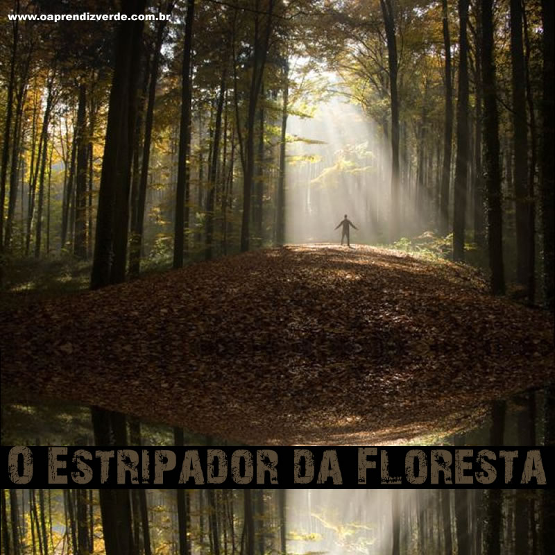O Estripador da Floresta