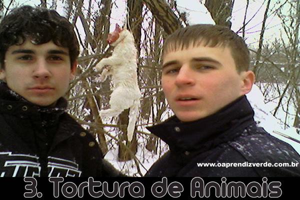 Tortura de Animais