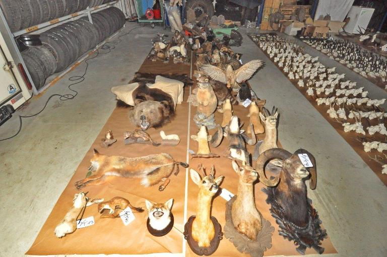 Notorios e Horripilantes Crimes de 2013 - Os 600 troféus de Huber 2