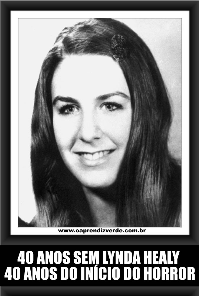 40 anos sem Lynda Healy - Capa