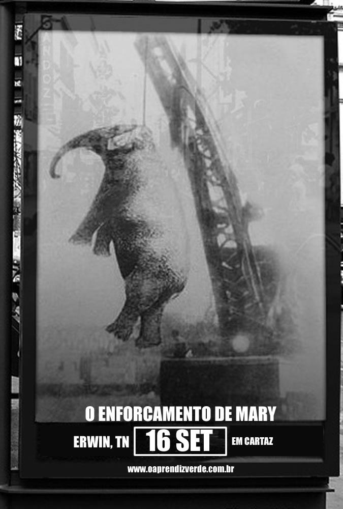 Erwin, a cidade que enforcou um elefante - Capa
