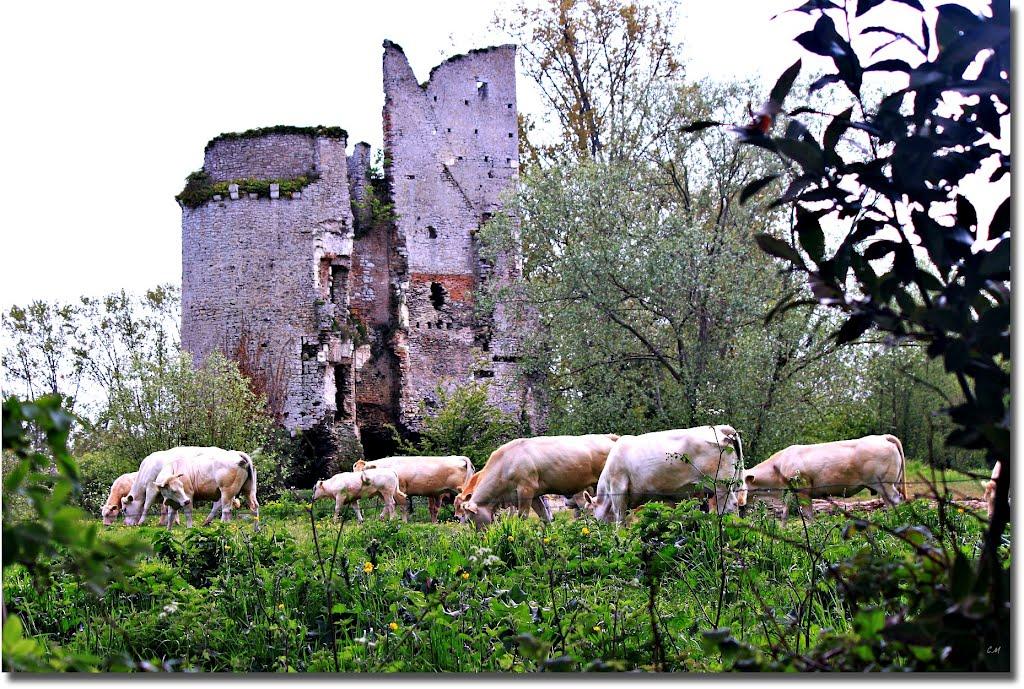Serial Killers - Gilles de Rais - Castelo de Machecoul