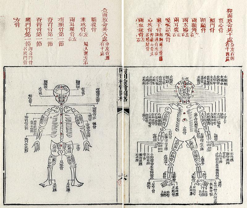 """Na foto: Páginas do manual """"A Limpeza dos Erros"""". O registro chinês é o primeiro documento conhecido sobre a ciência forense. Créditos: Wikipedia."""