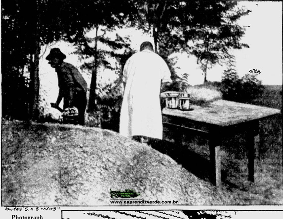 Fotografia mostra o coveiro trabalhando e o médico examinando partes dos corpos desenterrados. Após exames preliminares na mesa ao lado da cova, vários órgãos dos corpos foram enviados para Budapeste (Instituto Médico Criminal para análises). Foto: The Milwaukee Sentinel, 23 de Novembro de 1929.