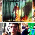 101 Crimes Notórios e Horripilantes de 2015