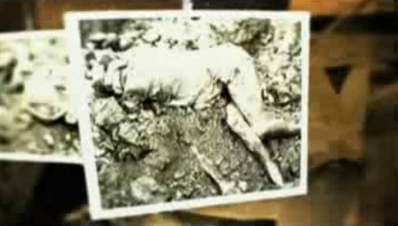 Corpo encontrado no Rancho Santa Elena