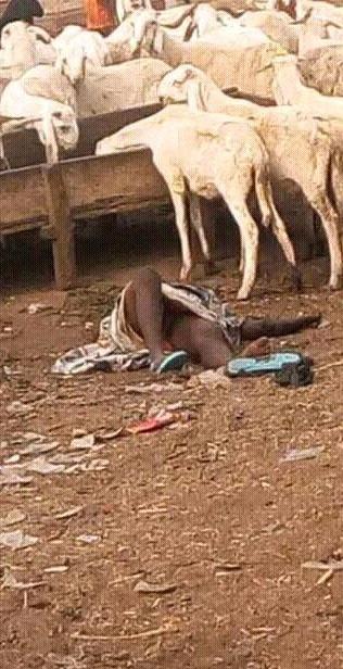 Mulher Bomba - Boko Haram