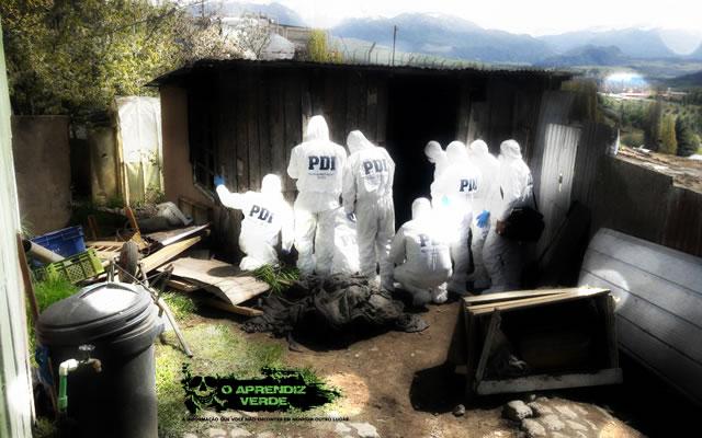 Criança Chile - 101 Crimes Notórios e Horripilantes de 2016