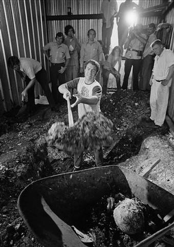 Presidiário cava na garagem de barcos à procura de corpos. No carrinho de mão, o crânio da décima vítima desenterrada. Data: 9 de Agosto de 1973. Foto: Chron.